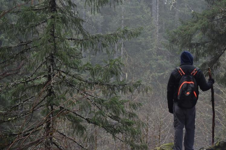 trail23
